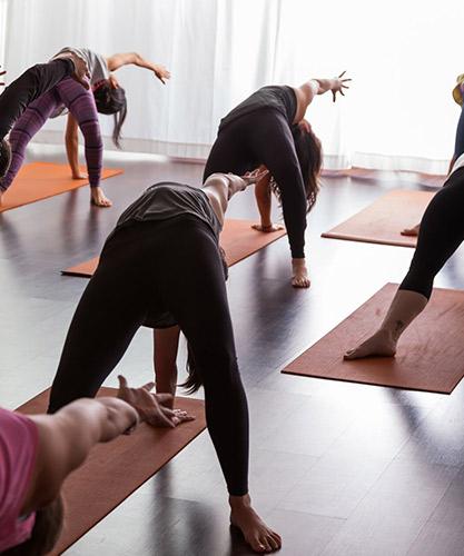 bayou_yoga_events_workshops